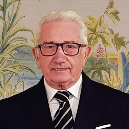 Mario Giudici